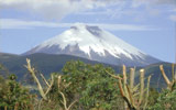 Ecuador Longer Tours